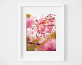 Spring Blossoms in Central Park print - New York City photo wall art - Pink feminine photography NYC nature decor - Girlfriend gift under 25