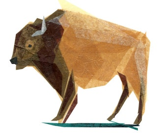 Jasper Buffalo - Buffalo Art Print, Buffalo Decor