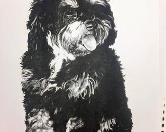 Custom Hand-Drawn Animal Portrait