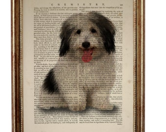 Dog Lover Gift, Dogs Breeds Prints, Coton De Tulear Dog Dictionary Art Print, Small White Dog Poster, Dogs Breeds Wall ArtBook Page