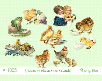 Digital Clipart, instant download, Vintage Victorian Easter Chicks, eggs, flowers, ducklings, frog, children--printable PNG files 4005