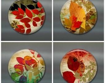 Set of fall leaves fridge magnets for fall decor