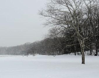 Snow Day - Neutral Tone -  Wall Decor - Pale Winter - Nature Art - Nature Photograph - Landscape Photography - Fine Art Photograph - Winter