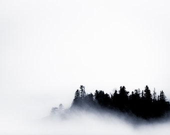 Trees in Fog - Landscape in Black and White - Lake Home Decor, Minnesota Fine Art, Monochrome Fine Art Photography Print