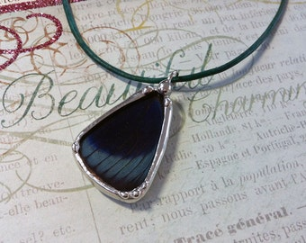 Butterfly Wing Charm Soldered Glass Pendant Specimen Jewelry