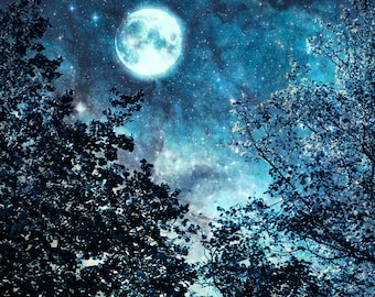 Nature photography, Blue Moon, Night sky, Stars, Trees, Wall Art, Home Decor.