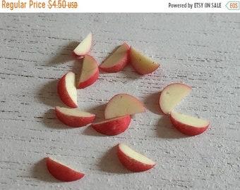 SALE Miniature Apple Slices, Cut Apple 12 Slices, Dollhouse Miniature, 1:12 Scale, Dollhouse Food, Accessory, Mini Food