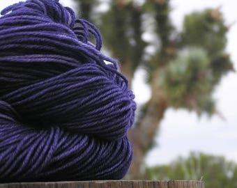 Sport Weight Yarn - Merino Superwash - Indigo Bush