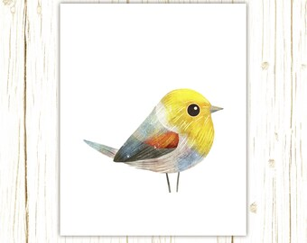 Verdin Print -- bird art -- colorful bird art by stephanie fizer coleman illustration