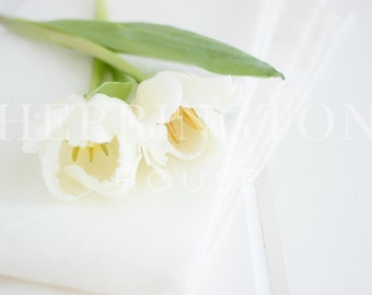Pure white stock photo | Minimal stock photo - Photo for Instagram - Tulip stock photo - Flower stock photo - Styled stock photo - Neutral