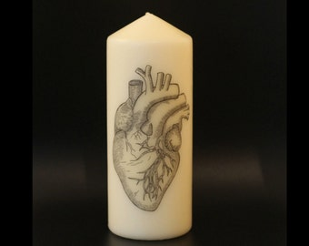 Anatomical Heart, Anatomy, Goth Decor, Pillar Candle, Anatomical Decor