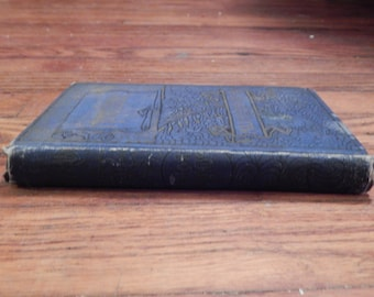 1888 . Hardscrabble . The Fall of Chicago . Victorian Novel .