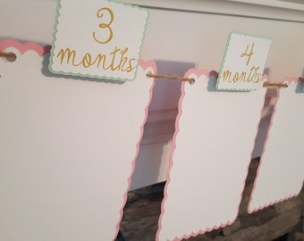 pink mint and gold monthly photo banner * pink mint and gold birthday * first birthday * pink mint and gold first birthday photo banner