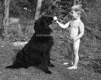 "vintage photo; black and white photography; ""boy shares ice cream cone with dog 1945"" decorative art"