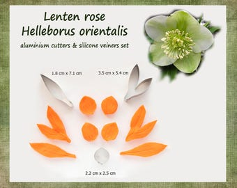 Helleborus orientalis / Lenten rose - flower cutter and veiner set
