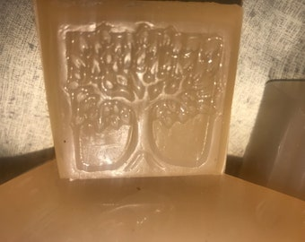 Protection and cleansing soap