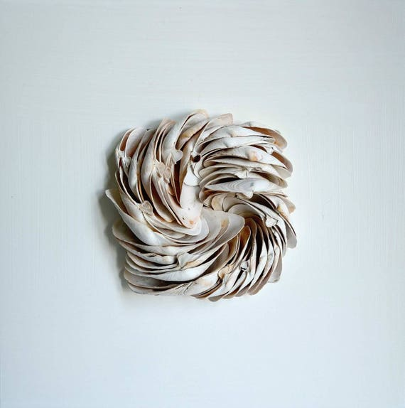 Flotsam Collage Mussels