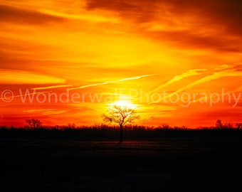 Fire In The Sky 2 - Digital Download