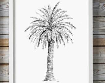 Palm Tree art - Pencil drawing - Giclee print -  Palm Decor  -  Tree sketch - pencil Zen drawing Palmtree illustration