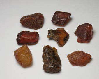 p89 set 8 pieces of amber UN-DRILLED