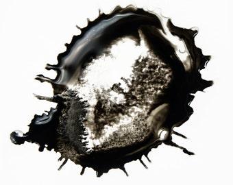 Prints, Black and White Art, Contemporary Photography, Giclee Print, Modern Art, Large Art, Unique Art, Cool Art, Original Art, Art