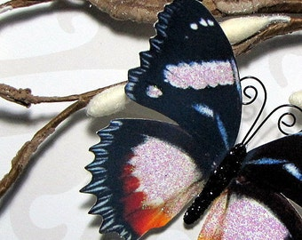 Butterfly Embellishments Twilight