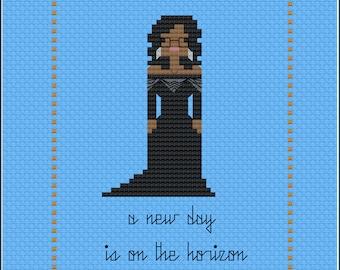 8-Bit Inspirations - Oprah 2018 PDF Cross-Stitch Pattern
