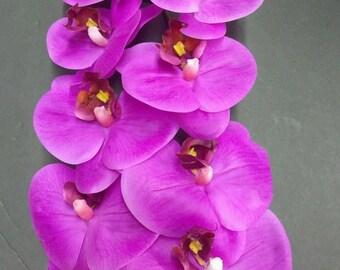"28"" Phalaenopsis Orchid stem"
