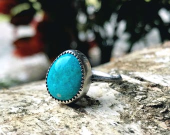 Evans Mine Turquoise Ring - Twig Collection - Sterling Silver - US size 8