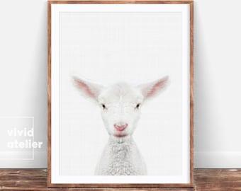 Nursery Print, Lamb Print, Nursery Decor, Farm Animal Print, Nursery Wall Art, Animal Wall Art, Baby Shower Gift, Nursery Art, Lamb Wall Art