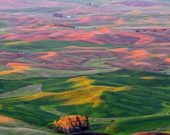 "Colorful Nature Photography ""Steptoe Spectrum"" Palouse Washington Landscape Photo, Sunset Photo, Rural Farm Wall Decor, Farm Art, Farm Print"