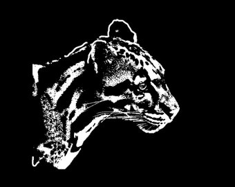 Clouded Leopard Decal