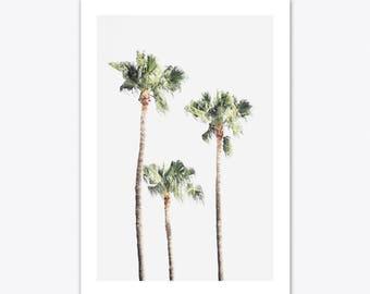 Beach Print, Palm Tree Print, Nature Print, Tropical Wall Art, Pastel Decor, Coastal Wall Art, Photography Print, Coastal Prints, Beach Art