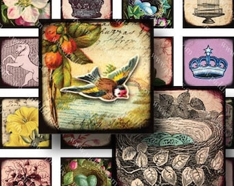 Royal Flora and Fauna Digital Collage Sheet 7/8 Inch Squares Two Collage Sheets in One Vintage French Birds Crowns Flowers piddix 767