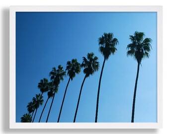 Row of Palm Trees Print Palm Tree Photography Cali Photo Print Beach Decor College Dorm Room Poster Print Blue Sky Beverly Hills Travel Art