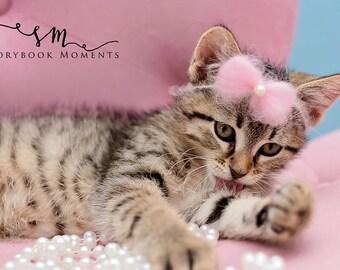 Sweet Angel Bow - animaux de la Saint-Valentin noeud - noeud embrasse pour les animaux et les bébés - bébé embrasse