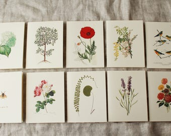 Floral Variety Pack Folded Note Cards with Envelopes | Floral Blank Note Cards | Flower Greeting Cards Handmade | Spring Greeting Cards