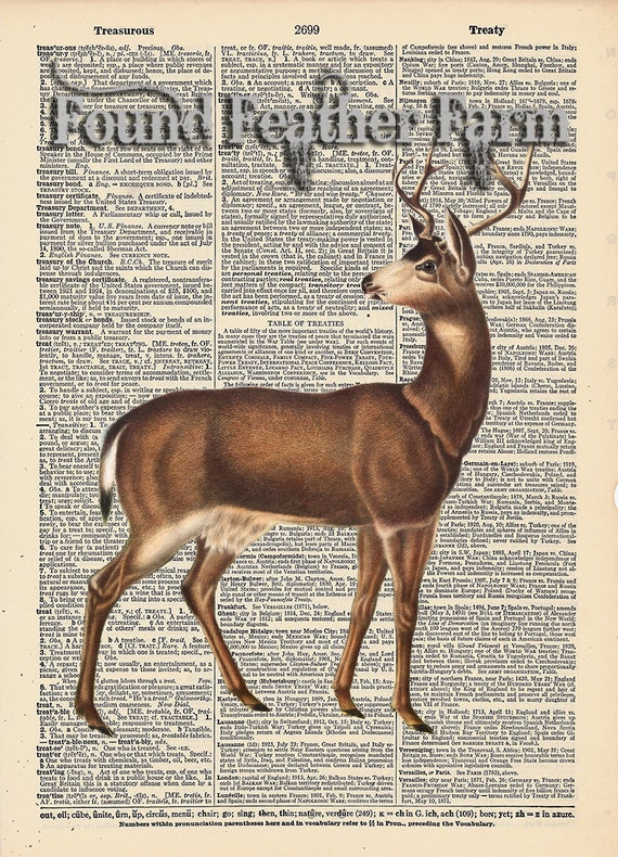 """Vintage Antique Dictionary Page with Antique Print """"Red Deer"""""""