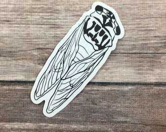 cicada vinyl sticker - bug sticker - vinyl bug sticker -  laptop sticker - insect sticker- illustrated sticker- insect art - insect vinyl