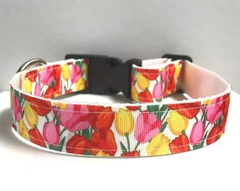 "1"" Tulip Dog collar"