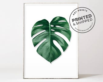 Monstera leaf, monstera print, palm leaf print, palm print, botanical prints, botanical art, leaf prints, monstera deliciosa, botanical leaf