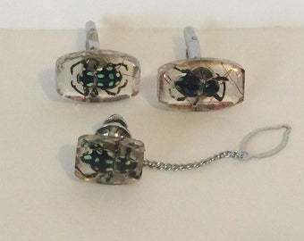 Vintage Bugs/Beetles in Lucite Cufflinks and Tie Tack