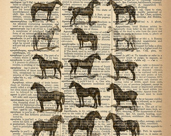 Dictionary Art Print - Horses - Equine Lineup - Upcycled Vintage Dictionary Page Poster Print - Size 8x10