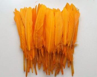 set of 10 feathers orange 10-15cm
