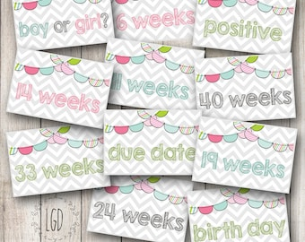 Pregnancy Weekly Planner Stickers, Pregnancy Tracker, Perfect for Erin Condren Life Planner, Set of 60