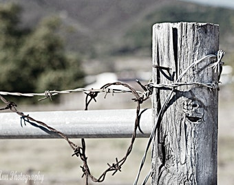 Old Barbed Wire Fence country print black and white old farm