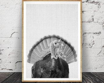 Turkey Print, Wall Art, Black and White, Animal Photography, Bird Photo, Farm Animal, Nursery Decor, Printable Poster, Thanksgiving Art