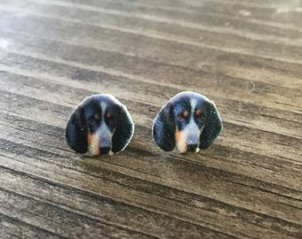 Coonhound earrings jewelry dog blue tick hunting dog