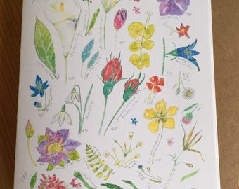 Floral Watercolor Blank Note Card - Wildflower Boxed Blank Cards - Sketchbook Page Watercolor Flower Note Cards - Box of 6