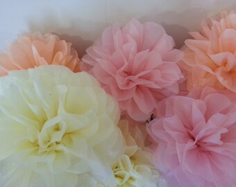 SPECIAL OFFER..Set of 9 Tissue paper poms..Bridal Shower//Weddings//Anniversary//Birthday's Decor//Blush Colours